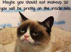 Grumpy cat makeup advice