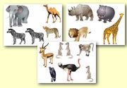 Storyboard / Cut and Stick Resources - African -Animals