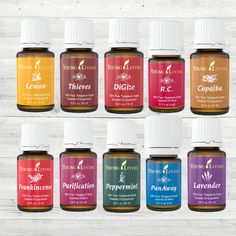 Young Living Premium Starter Kit  #youngliving #oils #essentialoils #younglivingstarterkit #oilsinthestarterkit #yleo  11 oils, a premium diffuser, Ningxia Red, product samples and educational material. These are all of the things included in the Premium Starter Kit. It's amazing. Let's talk a little mo…
