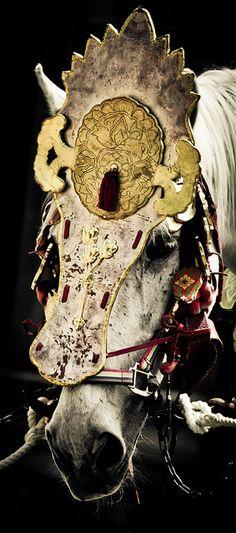 Horse dressed for Aoi Matsuri festival, Japan 葵祭