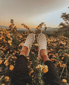 Image in yellow collection by Shekinah Ripley - Aesthetic Photography Aesthetic Colors, Summer Aesthetic, Aesthetic Vintage, Aesthetic Photo, Aesthetic Pictures, Aesthetic Yellow, Aesthetic Pastel, Aesthetic Light, Nature Aesthetic