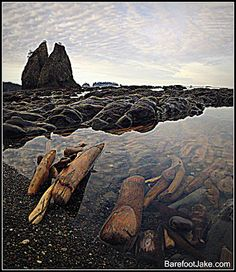 Blog: Backpacking Rialto Beach....This place reminds me of the description on the River Styx in Percy Jackson: The Lightning Theif...