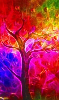A rainbow tree in full bloom. Taste The Rainbow, Over The Rainbow, World Of Color, Color Of Life, Rainbow Colors, Vibrant Colors, Rainbow Art, Rainbow Zebra, Art Fractal