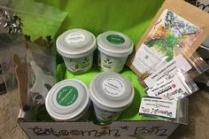 Container or garden subscription boxes for gardeners of all skills - May is Sunflowers & Squash