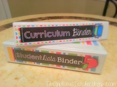 Start your year off on the organized foot! Steps on how to create a data binder and a curriculum binder.