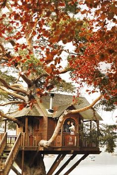 The Treehouse at The Lodge on Loch Goil