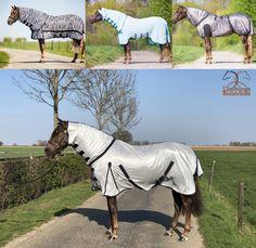 Onze vliegen- Netherlands, Blankets, Horses, Animals, The Nederlands, The Netherlands, Animales, Animaux, Blanket