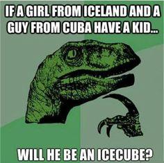 Icecube #Comics, #Funny, #Meme