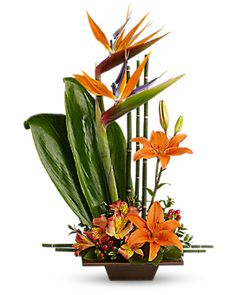Teleflora's Exotic Grace Flower Arrangement - Teleflora