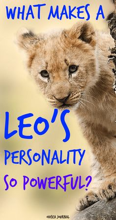 What Makes a Leo's Personality So Powerful? Leo women in bed truths. Leo symbol meaning. Astrology Signs Dates, Zodiac Signs Symbols, Astrological Symbols, Leo Women In Bed, Leo Men, Leo Characteristics, Leo Traits, Leo Relationship, Zodiac Relationships