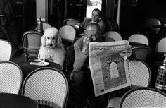 'Cafe De Flore, Saint Germain des Pres, Paris, 1953 photographed by 'EDOUARD BOUBAT' Poodles have hair not fur but I had to put this deep thinking Standard in with the other darlings. Robert Doisneau, Black And White Dog, White Dogs, Vintage Dog, Vintage Paris, French Vintage, Vintage Photographs, Vintage Photos, Rouge Paris