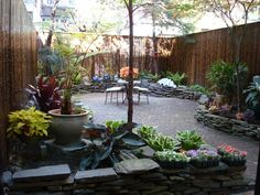 Small, urban backyards/gardens