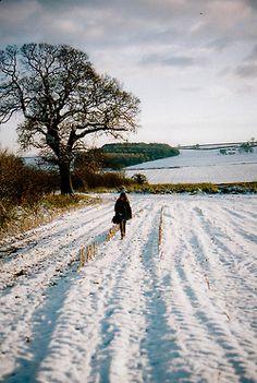 winter fields - Leeds, England | by © emilyharriet