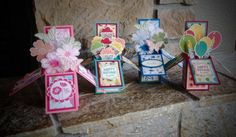 Card in a Box Class - All Cards! by Carol Hodson ( US Demo - WA )