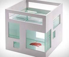 You wouldn't appreciate being stuck in a tiny bubble for your entire life, and neither do your pet fish. The time has come to upgrade to the fish condo aquarium and give them the improvement they so desperately want and need. Not only will your fish love it but it'll help you maintain the modern…