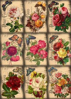 Red Pink Yellow ROSES & Butterflies on Postcard-INSTaNT