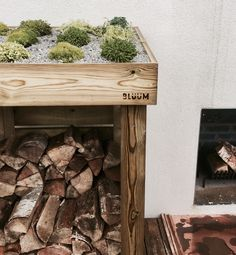 Modern look to the front of your house with a Bluum log and firewood storage unit and its green living roof planter for sedum, succulents, alpines, grasses and herbs Mini Store, Log Store, Firewood Logs, Firewood Storage, Outside Fireplace, Pressure Treated Timber, Roof Overhang, Living Roofs, Bike Shed