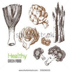 Hand-drawn vegetables. Vector illustration includes leeks, broccoli, asparagus, artichoke. Ideal for use in organic food industry, healthy green food market, vegetarian restaurant.