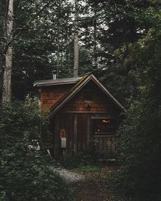 """A Northern Cabin walletsandwhiskey: """"This was home for the past few days on Orcas Island via """" Forest Cabin, Forest House, Cabin In The Woods, Cottage In The Woods, Cabin Homes, Log Homes, Little Cabin, Cabins And Cottages, Log Cabins"""