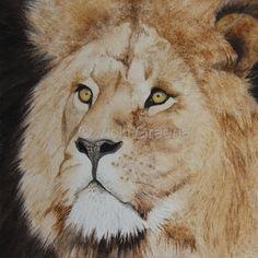 An Original Fine Art Gallery by Daily Paintworks Watercolor Cat, Watercolor Artists, Watercolor Animals, Watercolor Paintings, Lion Cat, Animal Drawings, Drawing Animals, Fine Art Gallery, Big Cats