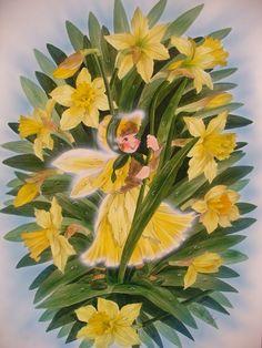 Narcis fairy