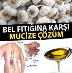 The Benefits of Taşköprü Garlic for Lumbar Hernia – Diet and Nutrition Nutrition Drinks, Diet And Nutrition, Healthy Drinks, Health Goals, Health And Wellness, Health Fitness, Garlic Benefits, Fitness Tattoos, Natural Health Remedies