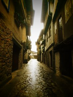 Calle Miguel Angel Maillo.