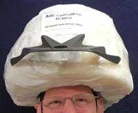 Anti-concussion helmet photo