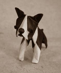 Origami Boston terrier 2016 by Lonely-Shiba