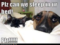 No. where will i sleep, then