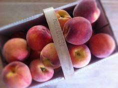 Fresh Rittman, Ohio peaches.