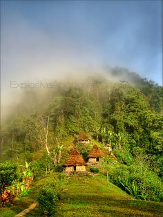 Trek to the Lost City (Ciudad Perdida) - Explosive Aperture Visit Colombia, Colombia Travel, Sierra Nevada, Places To Travel, Places To Visit, Colombia South America, Lost City, Cool Landscapes, Travel