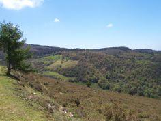Foto feita desde a pista, camin de San Roque, a os prados da serra de Fontescavadas el ano pasado. Ponden verse os prados de Bullaso y Llombatin.