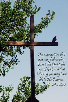 John 20:31 But these are written, that ye might believe that Jesus is the Christ, the Son of God; and that believing ye might have life through his name.