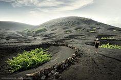 La Geria. Fotografia de Christian Hansen. #Lanzarote #Canary #Islands