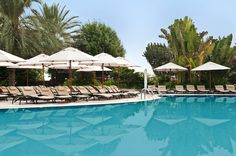 Hotel Hilton in Dubai - Deckchairs #pool #decoration #outdoor