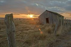 Shack on the Fence Line by Dale Lockwood