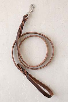 Forager Co. Braided Leather Dog Leash - Urban Outfitters