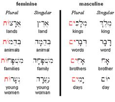 """Nouns in Hebrew: Gender All Hebrew nouns are either feminine or neuter. Hebrew does not carry a """"neuter"""" gender, as Biblical Greek does. While there are some predictable patterns in determining a. Biblical Hebrew, Hebrew Words, Learn Hebrew Online, Learning A Second Language, Learning Methods, Word Study, New Students, Thats The Way, Word Families"""