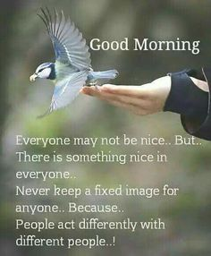 Good Morning Pictures, Images, Photos - Page 2 Blessed Morning Quotes, Good Morning Prayer, Good Morning Inspirational Quotes, Morning Greetings Quotes, Good Morning Picture, Good Morning Messages, Morning Blessings, Good Night Quotes, Morning Prayers