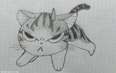 Angry Cat, Cats, Drawings, Gatos, Sketches, Cat, Drawing, Kitty, Portrait