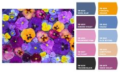 Paint colors from Chip It! by Sherwin-Williams.  Creates a Sherwin-Williams paint palette from any image!!