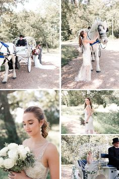 Horse & Carriage, among the winter theme in this beautiful winter wedding makes for the perfect combination. Great decorations for an outside winter wedding among the winter foliage Tap here for more winter themed wedding ideas for your special day. Swish + Click Wedding photographer in Houston, Texas for nerdy chic couples. #swishnclick Outside Winter Wedding, Winter Wedding Flowers, Winter Bride, Wedding Themes, Wedding Styles, Wedding Decor, Wedding Ideas, Small Intimate Wedding, Intimate Weddings