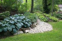hosta gardens - Google Search