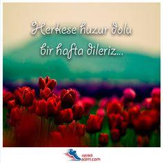 Herkese huzur dolu bir hafta dileriz... RenliAdim.com #RenkliAdım #huzur #iyihaftalar #pazartesi