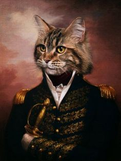 Captain Claw by DSSiege11.deviantart.com on @deviantART. Anthropomorphic cat art.