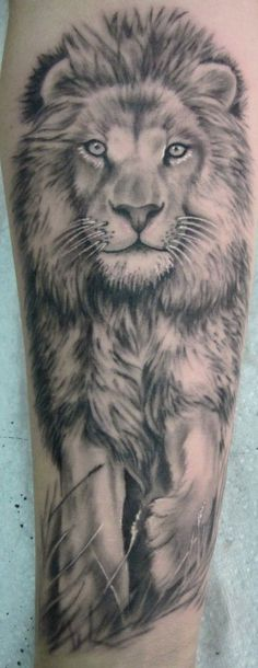 When you say lion, the first thing that comes to ones head is royalty and confidence,isn't it ? The image of a lion represents supremacy, power and ferociousness. Lion, the King of Beasts is one…   tatuajes | Spanish tatuajes  |tatuajes para mujeres | tatuajes para hombres  | diseños de tatuajes http://amzn.to/28PQlav