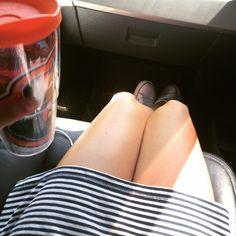 Herbal Tea, Stripes, and Chucks. #sunday #Teavana #gators