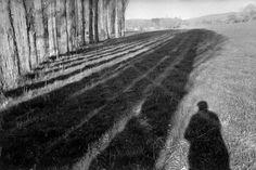 Henri Cartier-Bresson FRANCE. Alpes de Haute-Provence. Near Cereste. 1999. 1999 © Henri Cartier-Bresson /Magnum Photos  .