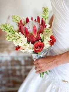Lovely red King with tuberose and roses Flor Protea, Protea Wedding, Protea Bouquet, Safari Wedding, 50th Wedding Anniversary, Anniversary Ideas, Australian Native Flowers, Bride Bouquets, Flower Bouquets